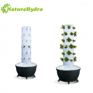 Aeroponic Tower System