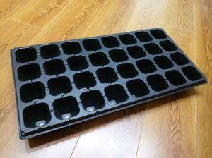 Nursery trays and seedling