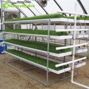 Fodder System For Livestock