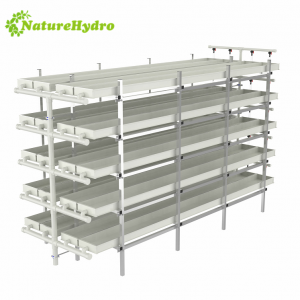 hydroponic fodder growing system,Daily output 60kg/layer barley fodder system
