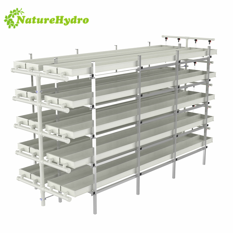 hydroponic fodder growing system,Daily output 60kg/layer barley fodder system Featured Image