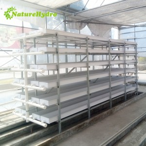 Daily output 100kg/layer animal fodder system