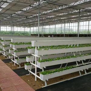 Strawberry Gutter System