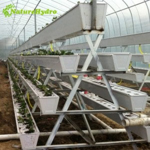 Plastic trough grow gutter system for greenhouse。Hydroponic Strawberry Gutter End Cap