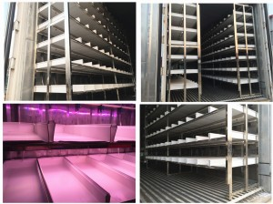 1000kg Fodder Container System