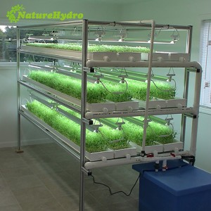 hydroponic green fodder system_Automatic micro green sprouting machine system