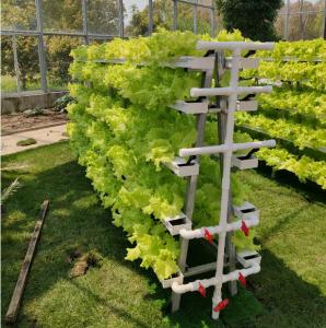 A shaped NFT grow system