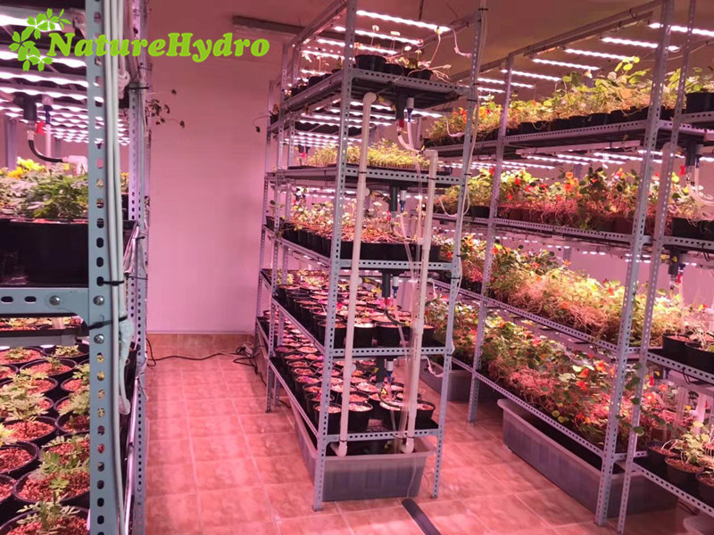 Vertical Container Grow Table Featured Image