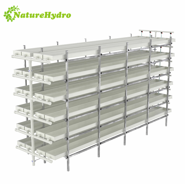 Hydroponic green fodder barley sprouting fodder machine system ,Daily output 100kg/layer animal fodder system Featured Image