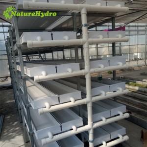 Hydroponic green fodder barley sprouting fodder machine system ,Daily output 100kg/layer animal fodder system