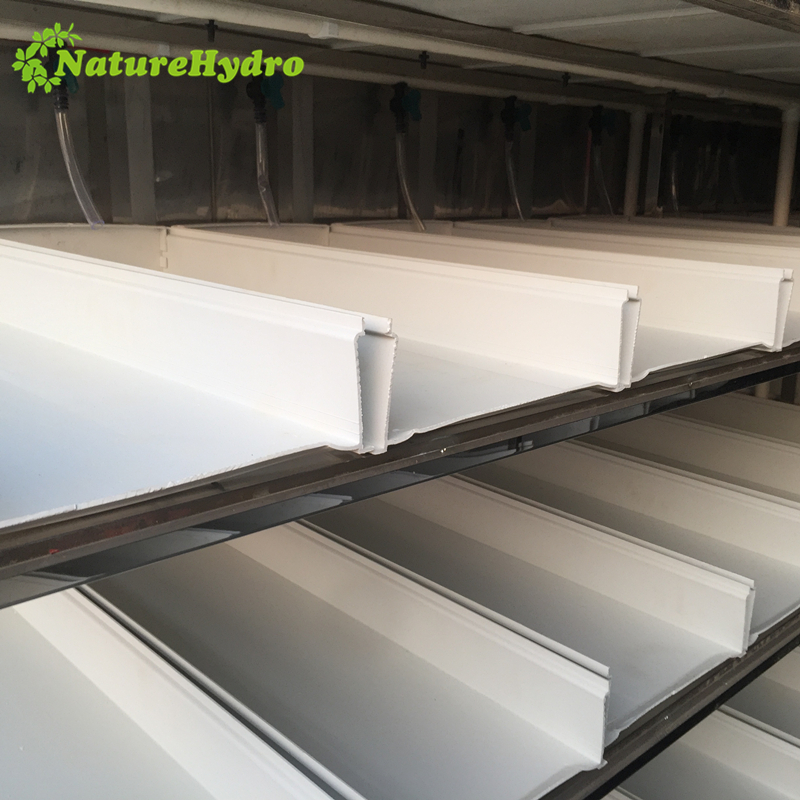 Animal fodder container microgreen system Featured Image