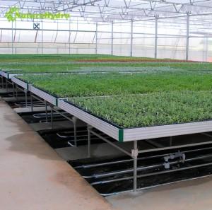 Indoor farming seedling trays nursery trays hydroponic flood tray